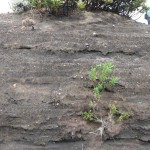 Layering of ash and rock as a result of volcanic eruptions over many years.